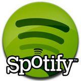 Musik von Spotify rippen