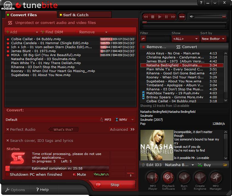 Screenshot von Tunebite Platinum
