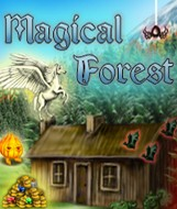 Magical Forest - Boxshot