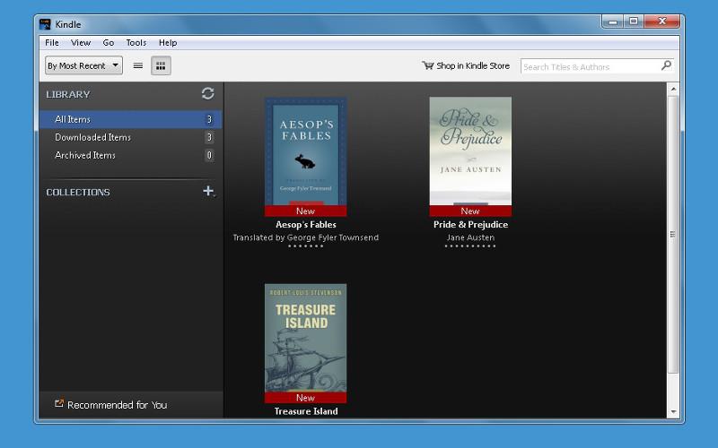 Screenshot af Kindle für PC