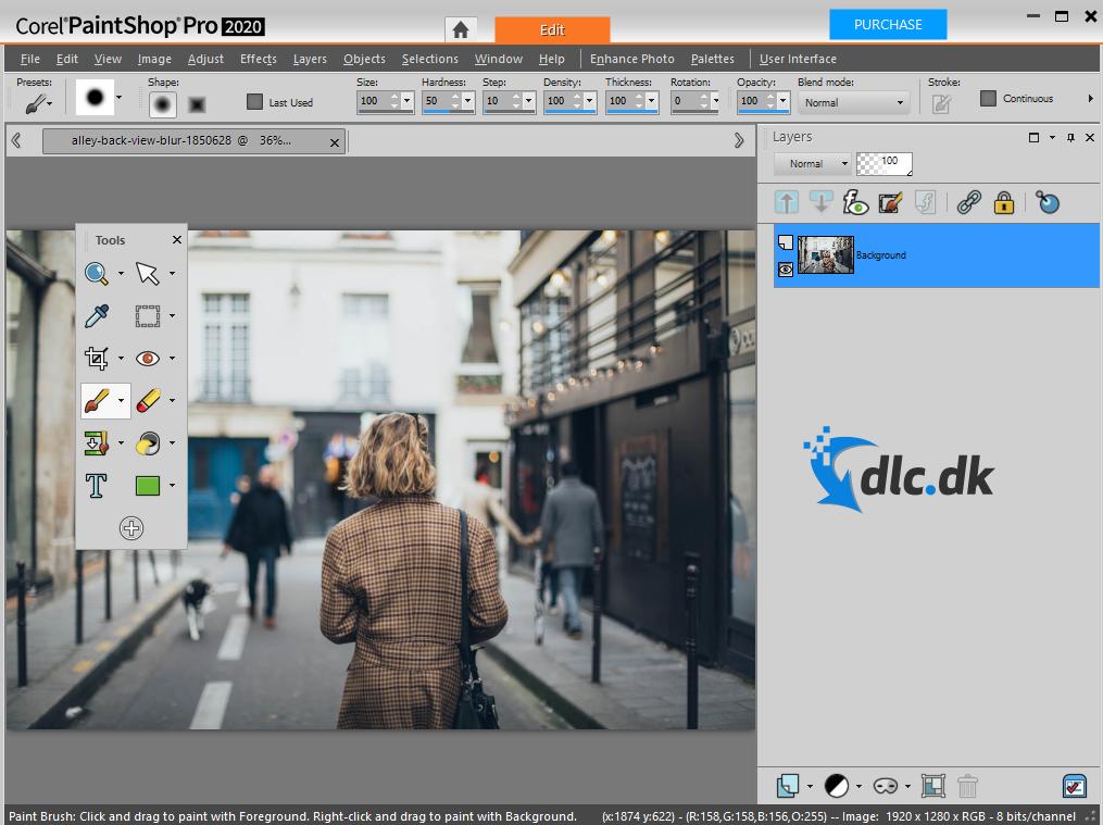 Screenshot af Paint Shop Pro