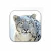 Apple Mac OS X Snow Leopard for Mac