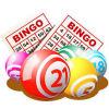 Bingo Caller Pro - Boxshot