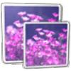 John's Image Converter - Boxshot
