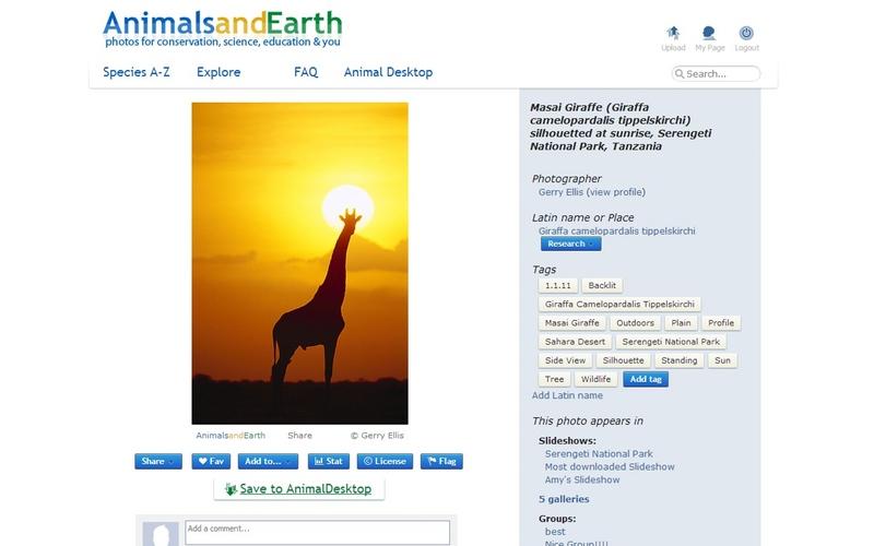 Screenshot af Animal Desktop til Mac