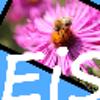 EasyImageSizer - Boxshot