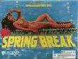 Spellcasting 301: Spring Break - Boxshot