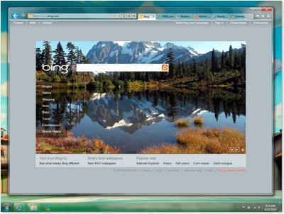 Screenshot af Internet Explorer