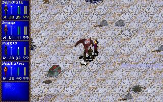 Screenshot af Darklands