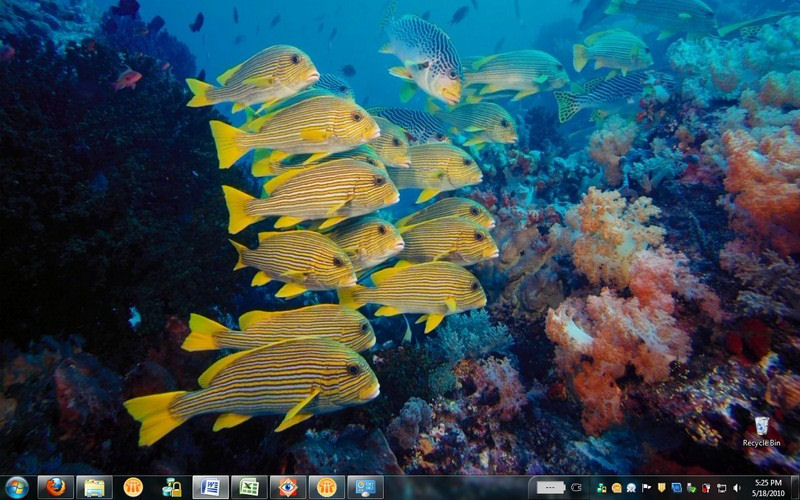 Screenshot af Ocean Life HD